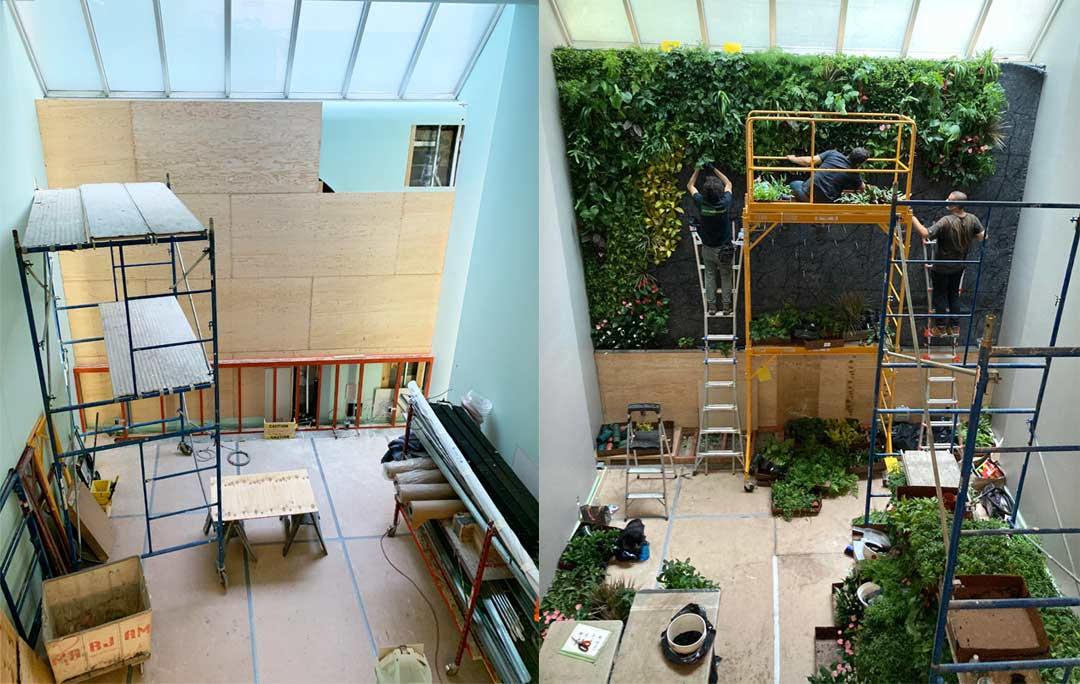 Plant wall build at Etain NYC